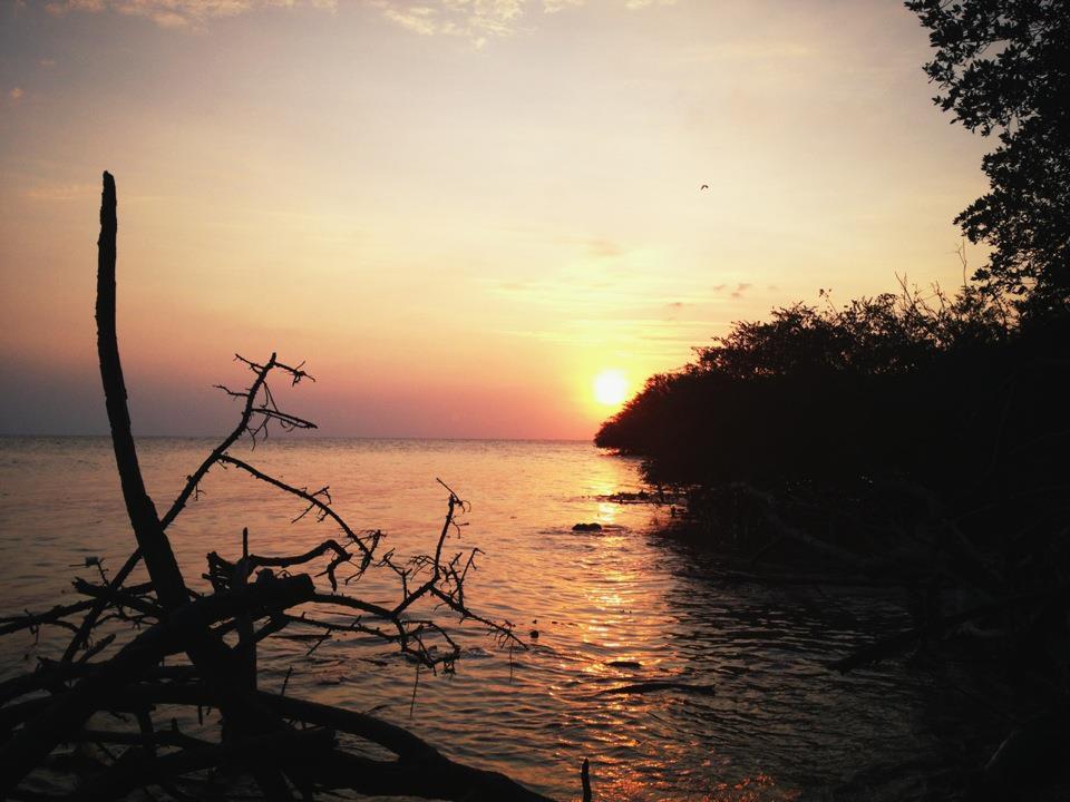 PUISI : DESAU ANGIN DAN PEREMPUAN YANG MERINDU